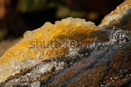 Flowing water Stock photo © EcoPic
