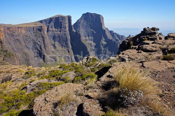 Bergen hoog koninklijk park South Africa Stockfoto © EcoPic