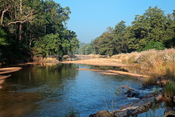 Parco India panorama fiume foresta alberi Foto d'archivio © EcoPic