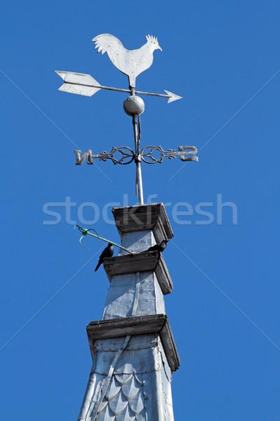 Cockerel weathervane Stock photo © EcoPic
