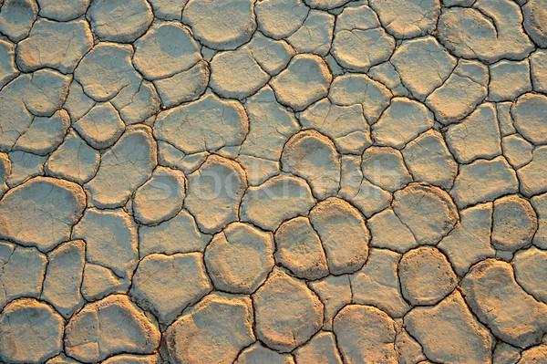 Сток-фото: треснувший · грязи · природы · почвы · землю · землю