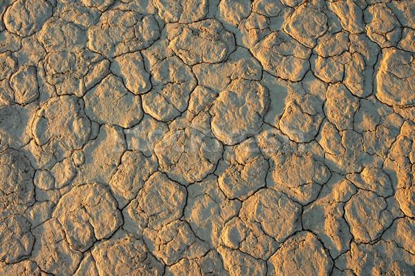 Cracked mud Stock photo © EcoPic