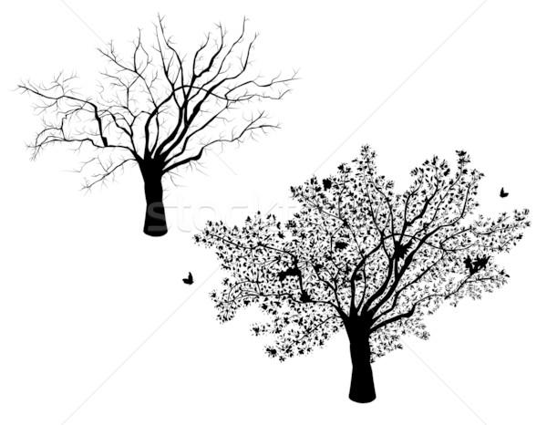 ツリー セット 冬 夏 木 ストックフォト © Eireann