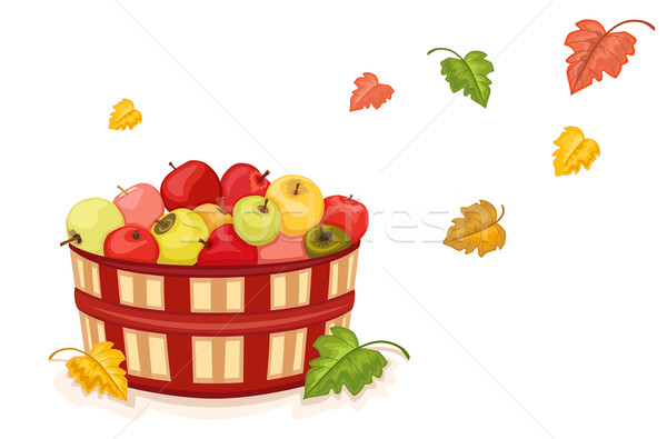 Autumn harvest with apples in basket Stock photo © Eireann