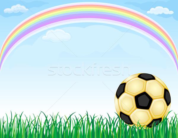 Ouro futebol arco-íris dourado futebol bola Foto stock © Eireann