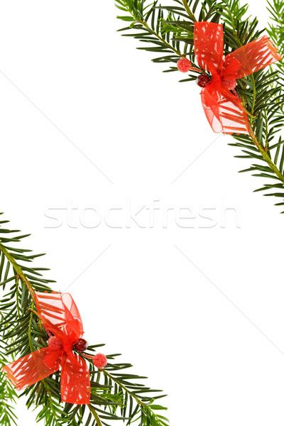 Natal fronteira pinheiro vermelho Foto stock © Eireann