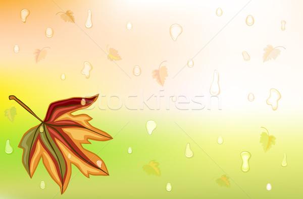 Сток-фото: дождь · лист · осень · капли · прибыль · на · акцию
