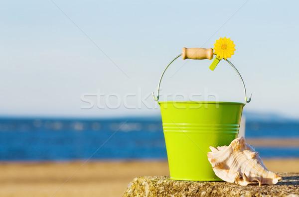 Verão diversão praia belo quarto oceano Foto stock © Eireann