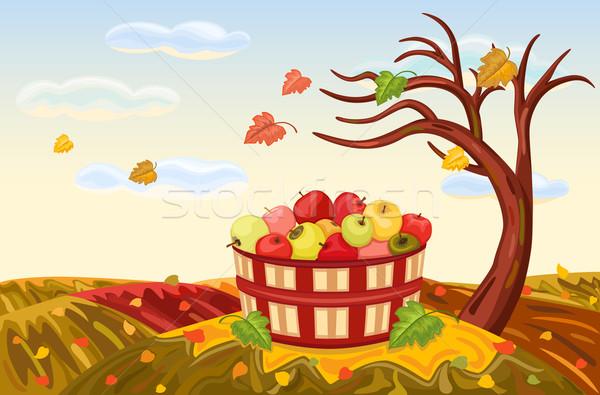 豊富な リンゴ 収穫 秋 美しい 風景 ストックフォト © Eireann