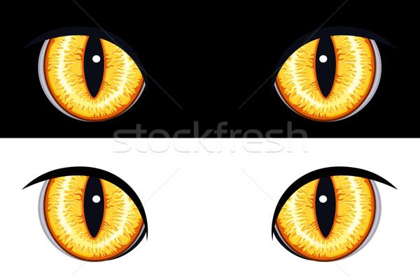 悪 動物 目 セット 孤立した 黒白 ストックフォト © Eireann