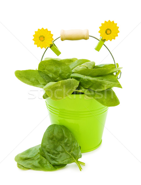Fresco espinafre folhas verde balde saudável Foto stock © Eireann