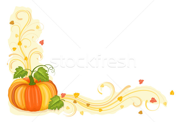 Autumn harvest with tasty pumpkin Stock photo © Eireann