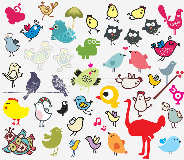 Stock photo: Big set of different cute birds.