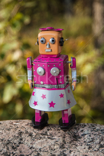 The robot on the stone. Stock photo © ekapanova
