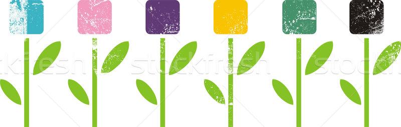 Extrano flores flor verano silueta planta Foto stock © ekapanova