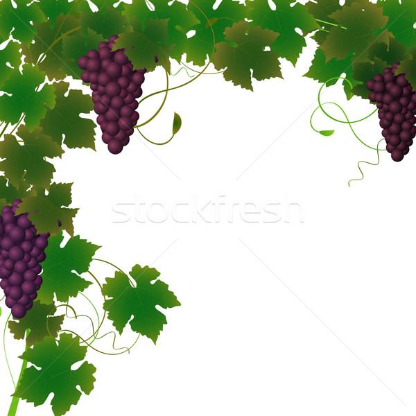Stock fotó: Szőlőtőke · keret · szőlő · étel · természet · levél