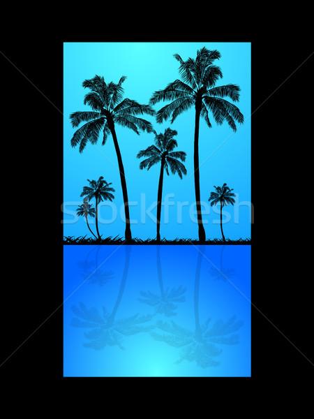 Palmeiras silhueta reflexão água grama blue sky Foto stock © elaine