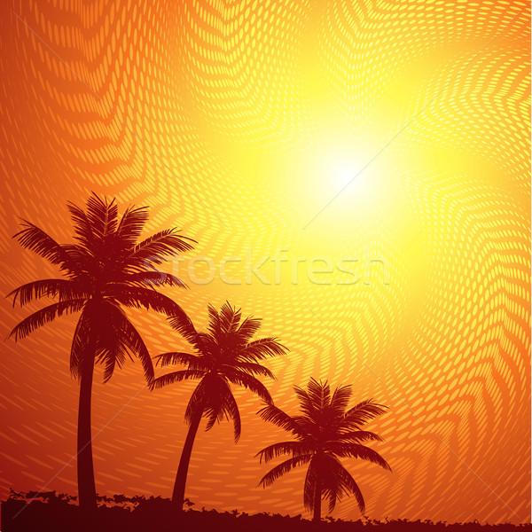 Tropicales ciel silhouette palmiers été coucher du soleil Photo stock © elaine