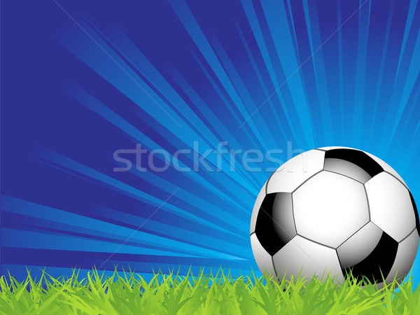 Stock photo: Football on grass