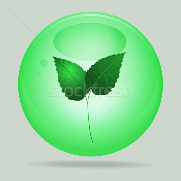 Green glass sphere with leafs inside Stock photo © elaine