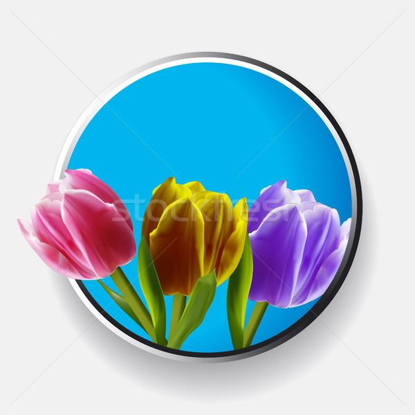 Trio of tulips over metallic border Stock photo © elaine