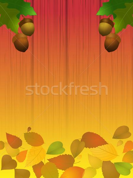 Autumn acorns and leafs on wood shaded panel Stock photo © elaine