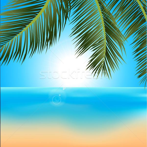 тропические Восход пальмами иллюстрация пляж пальма Сток-фото © elaine