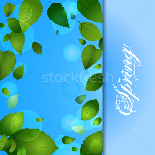 Spring background with leafs and text Stock photo © elaine