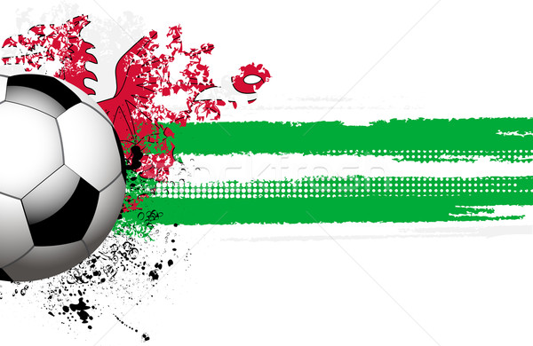 Welsh flag and football Stock photo © elaine