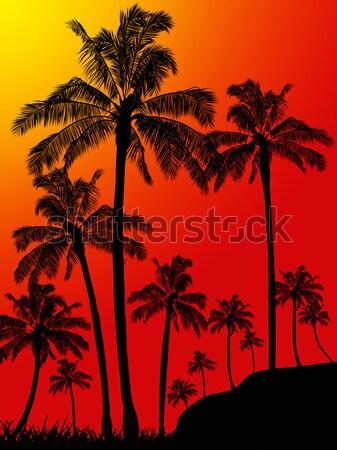 Palmbomen bos Blauw tropische zwarte silhouet Stockfoto © elaine