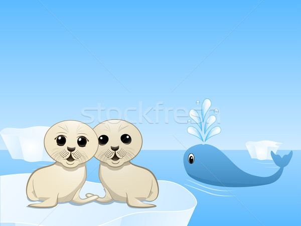 seals and whales Stock photo © elaine