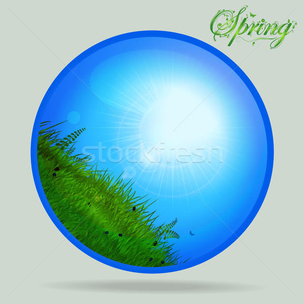 Azul primavera vidrio esfera hierba soleado Foto stock © elaine