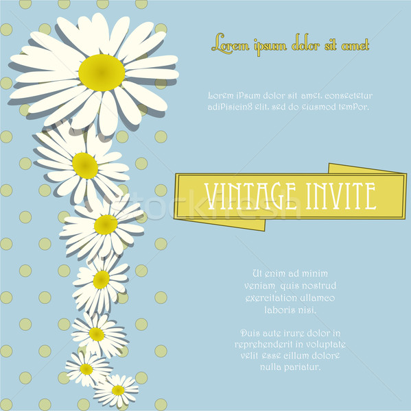 Invite vintage with chamomile flowers and sample text Stock photo © elaine