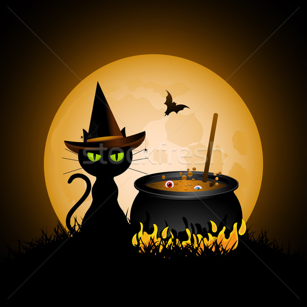 Halloween witch's cat and full moon Stock photo © elaine