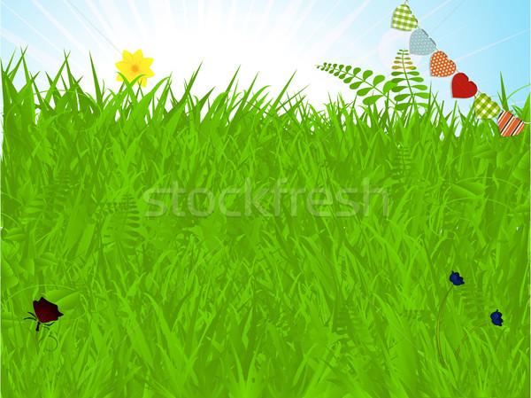 Wiosną trawy ciepły kwiaty Motyl serca Zdjęcia stock © elaine