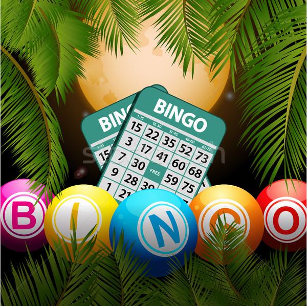 Bingo cartões lua palmeiras tropical Foto stock © elaine