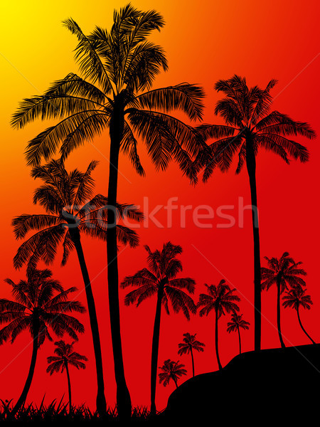 Palm trees forest portrait background Stock photo © elaine