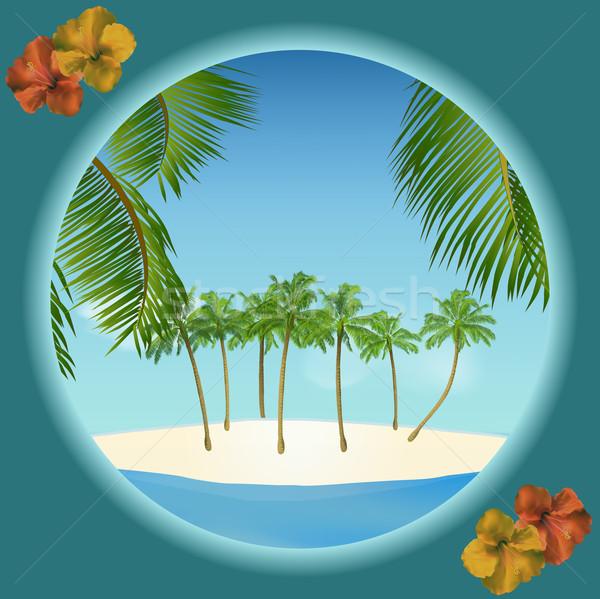 Тропический остров границе пальма гибискуса небе морем Сток-фото © elaine