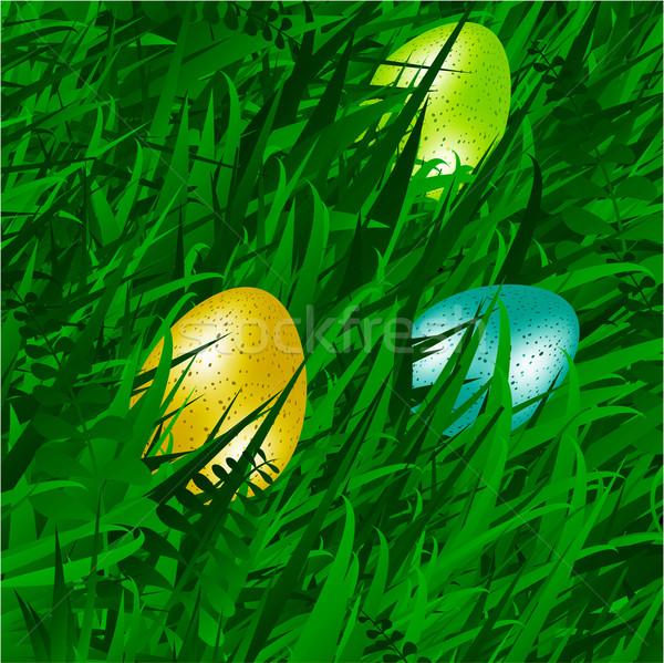 Eggs on grass background Stock photo © elaine