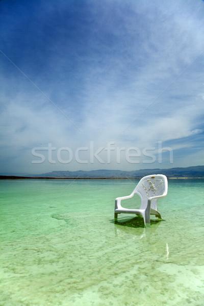 Gemakkelijk stoel dode zee zout gedekt Stockfoto © eldadcarin