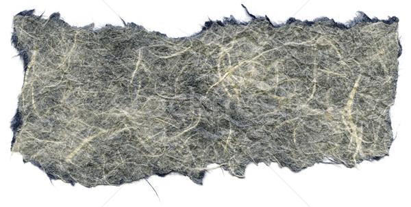 Isolated Rice Paper Texture - White & Blue XXXXL Stock photo © eldadcarin