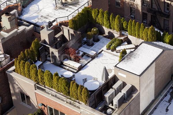 Snow Covered Rooftop Stock photo © eldadcarin