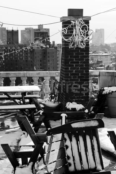 Snow Covered Garden Furniture Rooftop Manhattan New-York Stock photo © eldadcarin