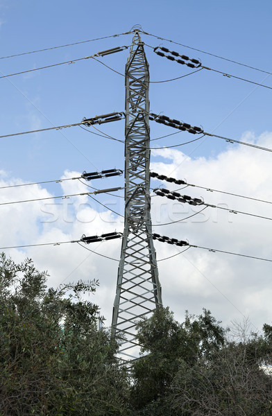 Elektriciteit achter bomen namiddag bewolkt hemel Stockfoto © eldadcarin