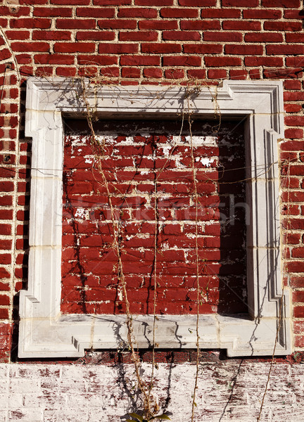 Empty Wooden Frame on Red Bricks Wall Stock photo © eldadcarin