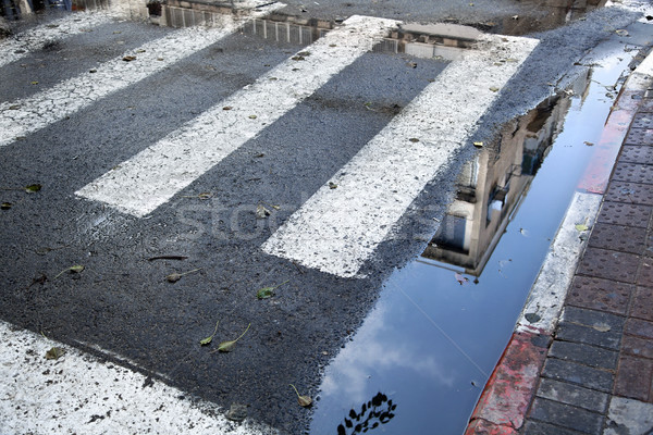 Crosswalk Puddle Stock photo © eldadcarin