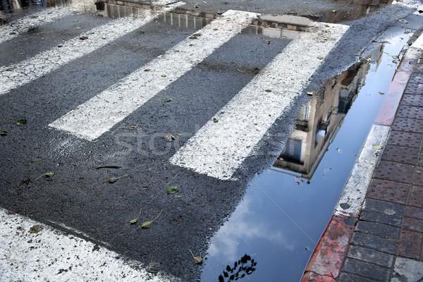 Pfütze Gebäude Zebra Streifen Winter Stock foto © eldadcarin