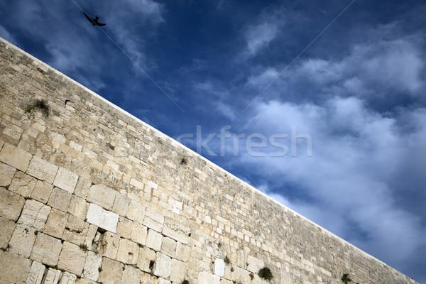 Oiseau au-dessus mur une sacré personnes Photo stock © eldadcarin