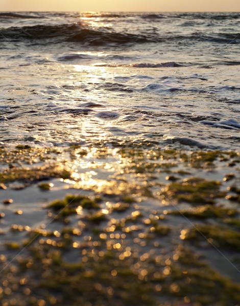 Burning Sunset Stock photo © eldadcarin