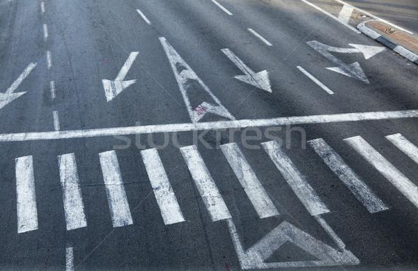 Kruispunt zebra Stockfoto © eldadcarin